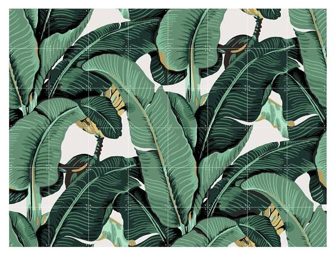 IXXI, Banana Leaf, illustratie, botanische, poster, print, wanddecoratie, muurdecoratie, fotowand, fotomuur, wallart