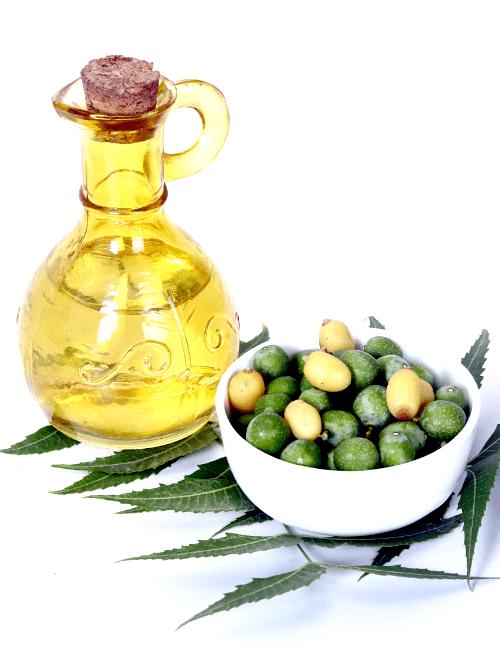 neemolie, natuurlijke insectenbestrijding, kamerplanten, neemolie spray maken