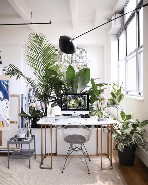 thuiswerkplek, werkplek, workspace, home office, kamerplanten, inspiratie, thuiswerken, inrichten, ideeën