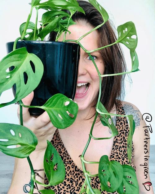 blog interview, partners in groen, plantparents, plantgekkies, crazy plantladies