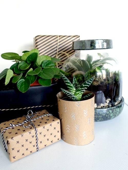 plant cadeau tips
