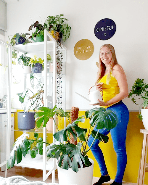 anouk, plantstate, blog interview, plantparent, plantgekkie, ikea greenhouse cabinet
