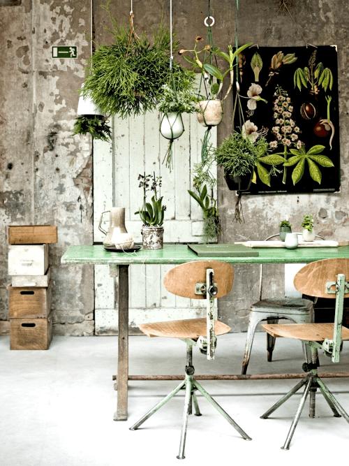 plantstyling, inspiratie, eettafel, eethoek, planten, plantenhemel, hangplanten, macramehangers