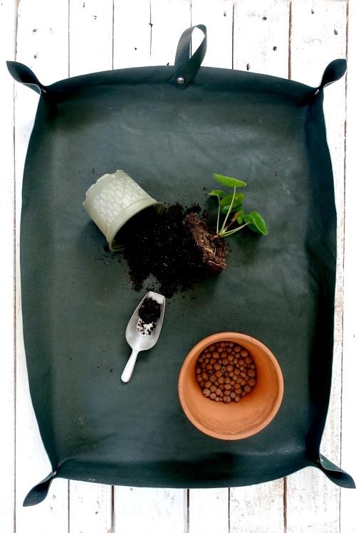 Plant en verpotmat